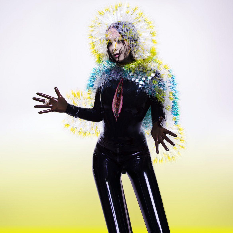 "Björk – ""Vulnicura"""