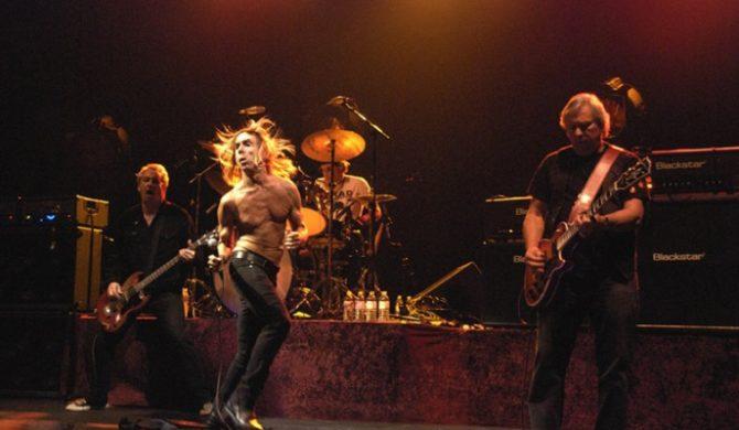 Iggy & The Stooges wciąż w tra(n)sie