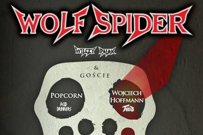 Reaktywacja Wolf Spider