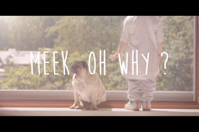 Meek, Oh Why? – nowy artysta w Asfalt Records